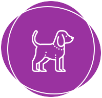 SOON: ANIMALS - Find your pet. Real-time location